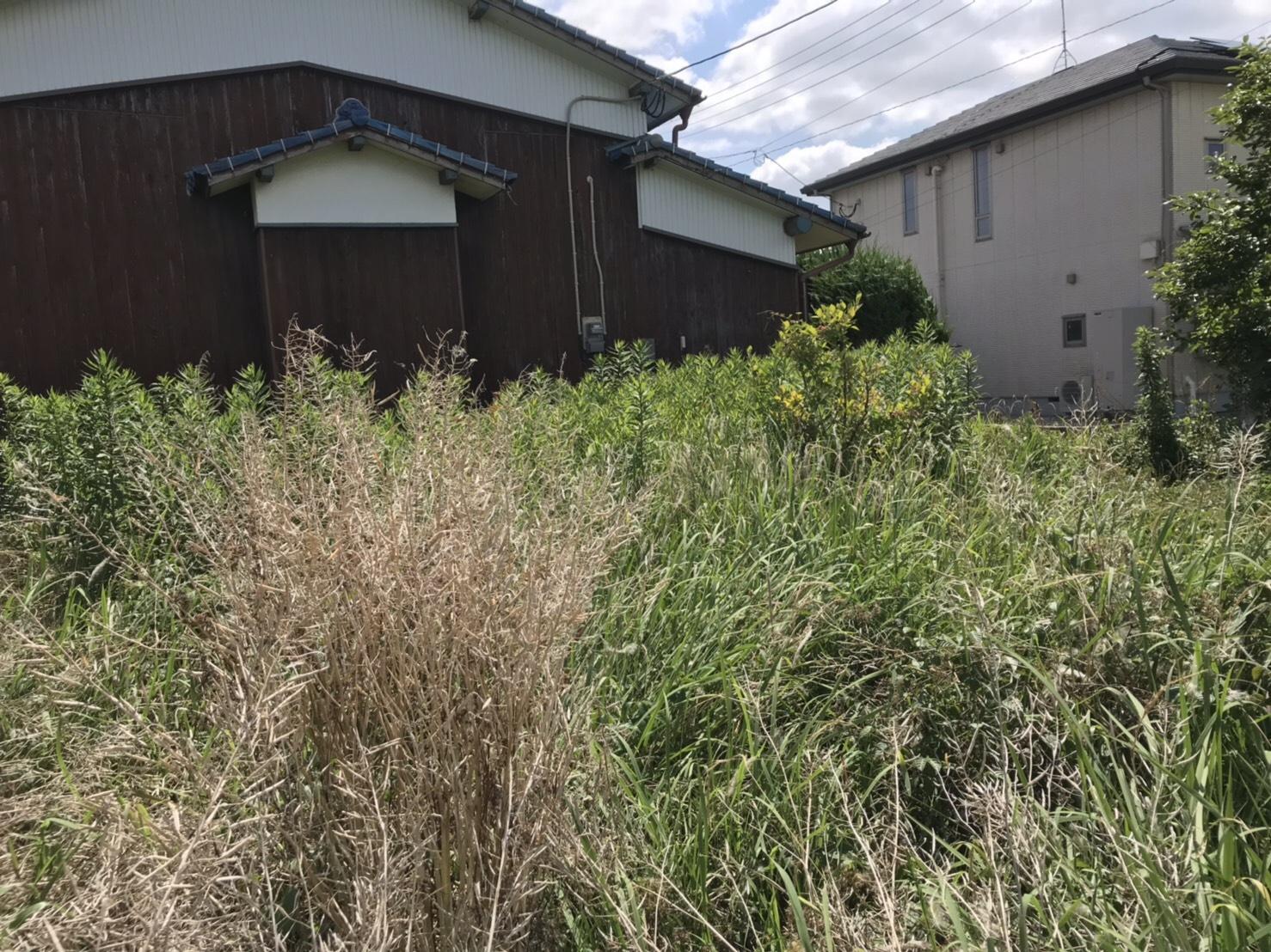 みやき町草刈機で一般住宅御庭のお掃除
