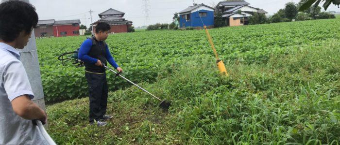 みやき町草刈り奮闘記
